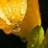 Raindrops keep faling...