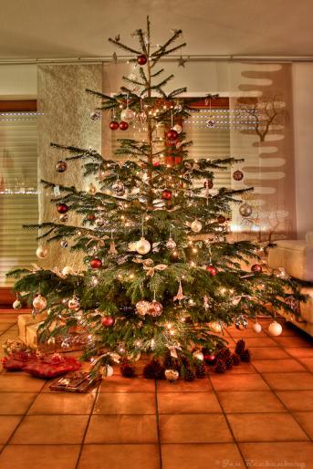 Weihnachtsbaum im HDR Raum 2011