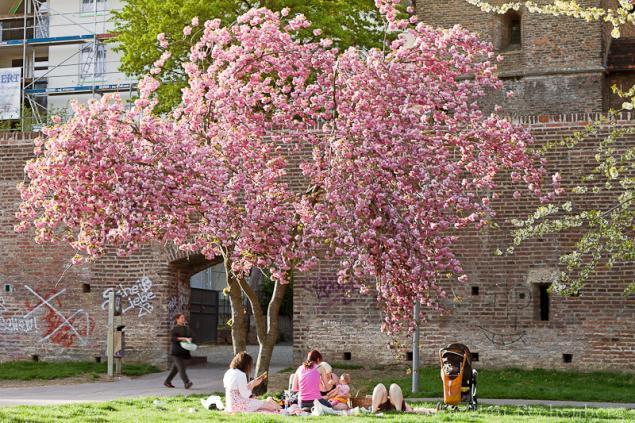 April - 12 Monate-1 Stadt-2012 - Thema: Frühling