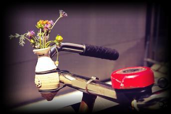 70ties Style am Fahrrad - Lomo Effekt