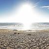 Playa do Amado (Algarve Portugal)