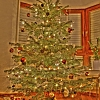 Weihnachtsbaum im HDR Raum